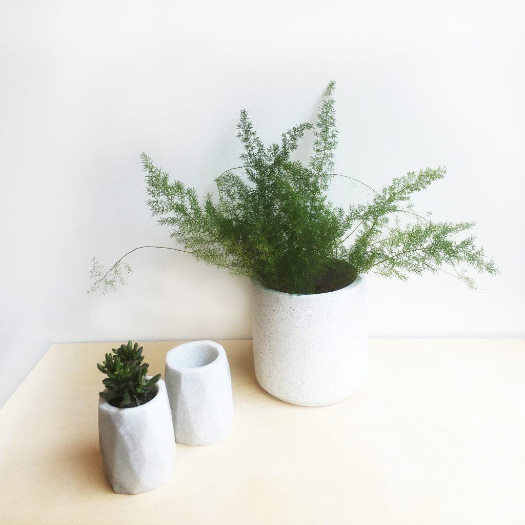 Plantjes deco